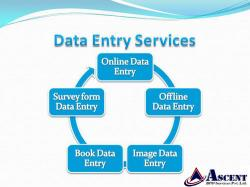 Data Entry Project Outsourcing Company & BPO projects